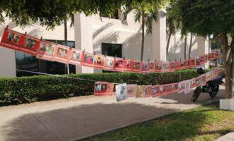 Sabuesos Guerreras tienen su 'Árbol de la Esperanza' para visibilizar a desaparecidos