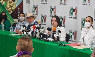 Morena redujo un 94% financiamiento a microempresas en el presupuesto 2022: PRI